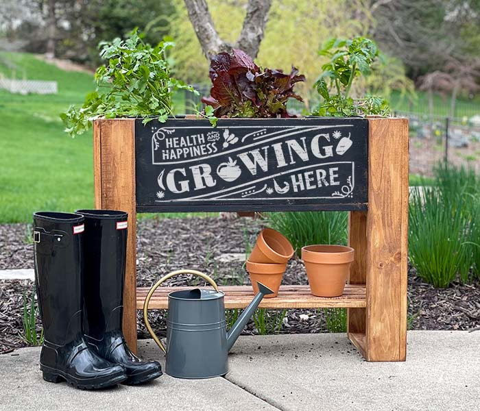 Health and Happiness Raised Planter